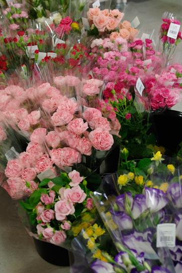 花の写真1, 彩菜みまさかにて