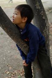 木登り王子