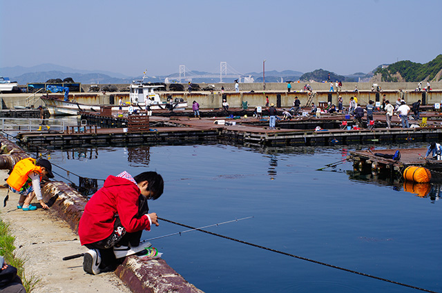 大鳴門橋を望む海上釣堀