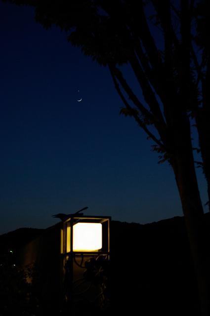 西の夜空、三日月と金星の大接近